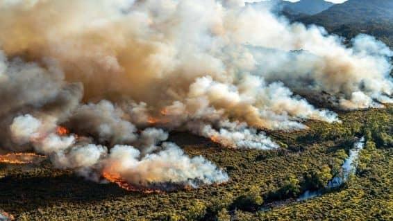 Bush Fires Sydney Australia